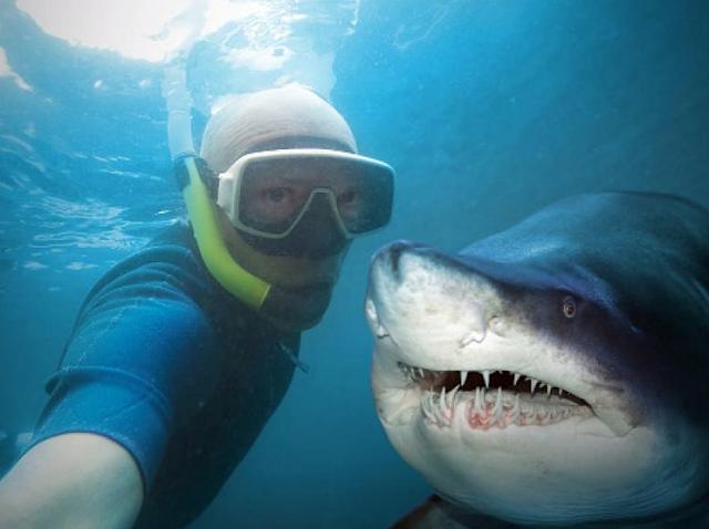 Selfie Membunuh Manusia Setiap Tahun