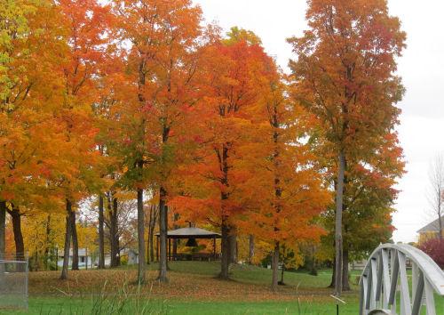 Onaway, Michigan park