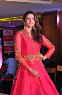 South Indian Celebrities Pos at Love For Handloom Collection Fashion Show  0105.jpg
