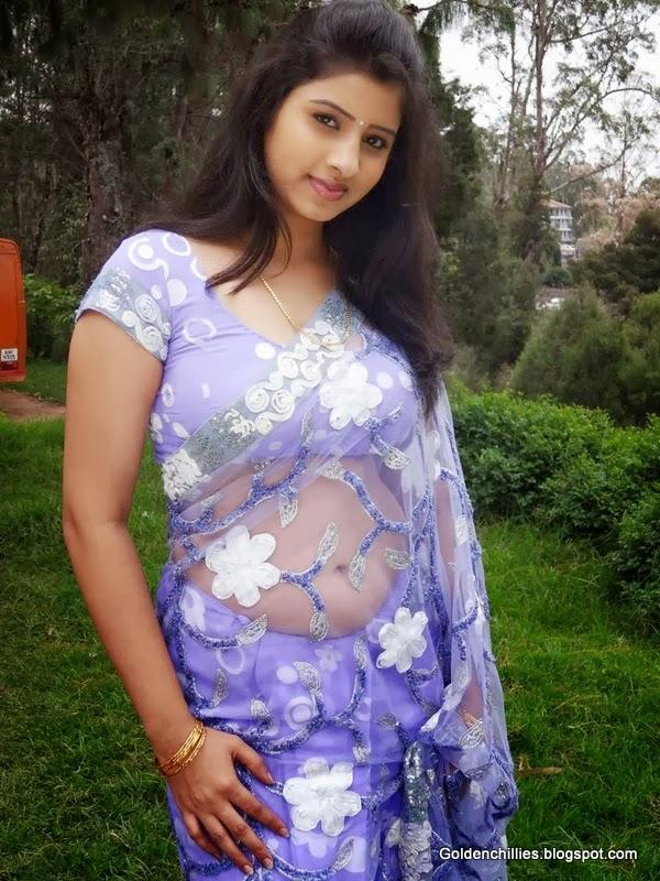 South Indian Aunties In Transparent Saree Hot Stills -4442