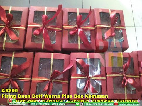 jual Piring Daun Doff Warna Plus Box Kemasan