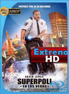 Heroe De Centro Comercial 2 2015 HD [1080p] Latino [GoogleDrive] DizonHD