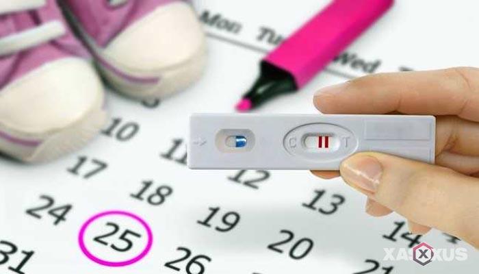 Cara KB alami dengan pendeteksi ovulasi