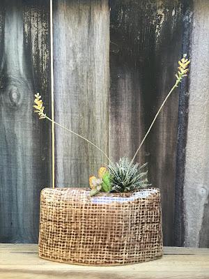 cactus, cacti, succulent planters, succulents, garden design Miami