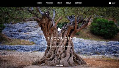 iAntz,Web designing company in Trivandrum Kerala