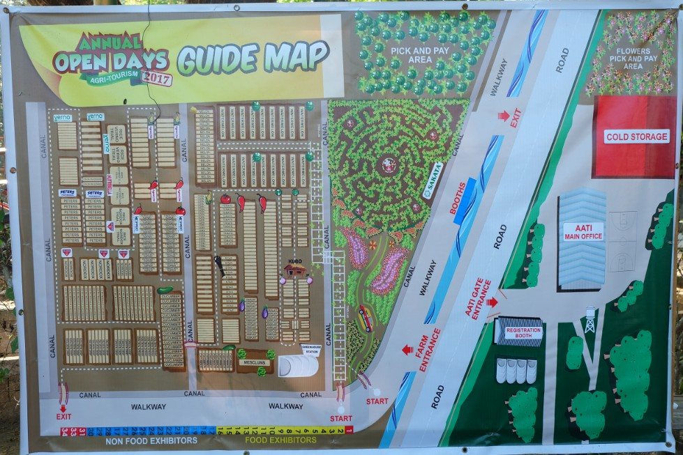 Map of the Sunflower Maze