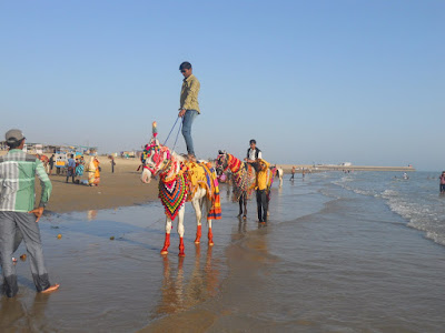 Horse riding at Mandvi beach