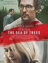 The Sea of Trees   Bmovies