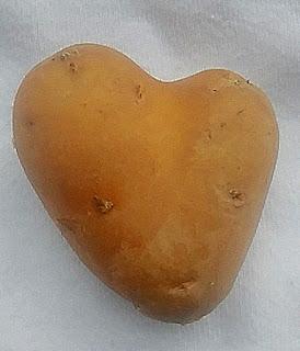potato face photo