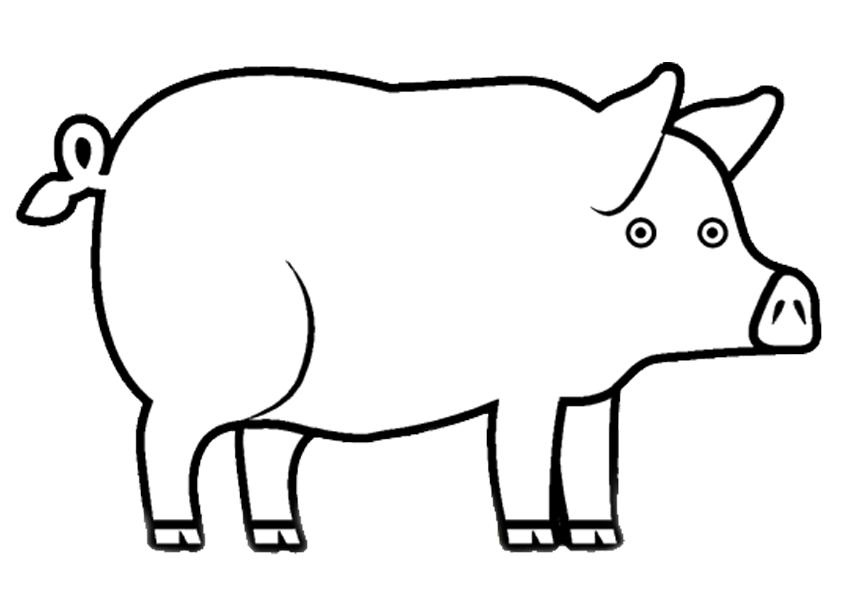 Pig Coloring Pages - Khayatart