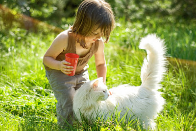 What do young children learn from pets?