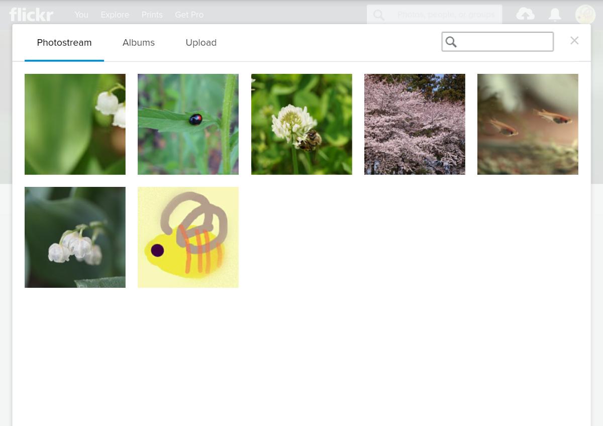 Flickrのアイコンとヘッダー画像の共通の画像選択