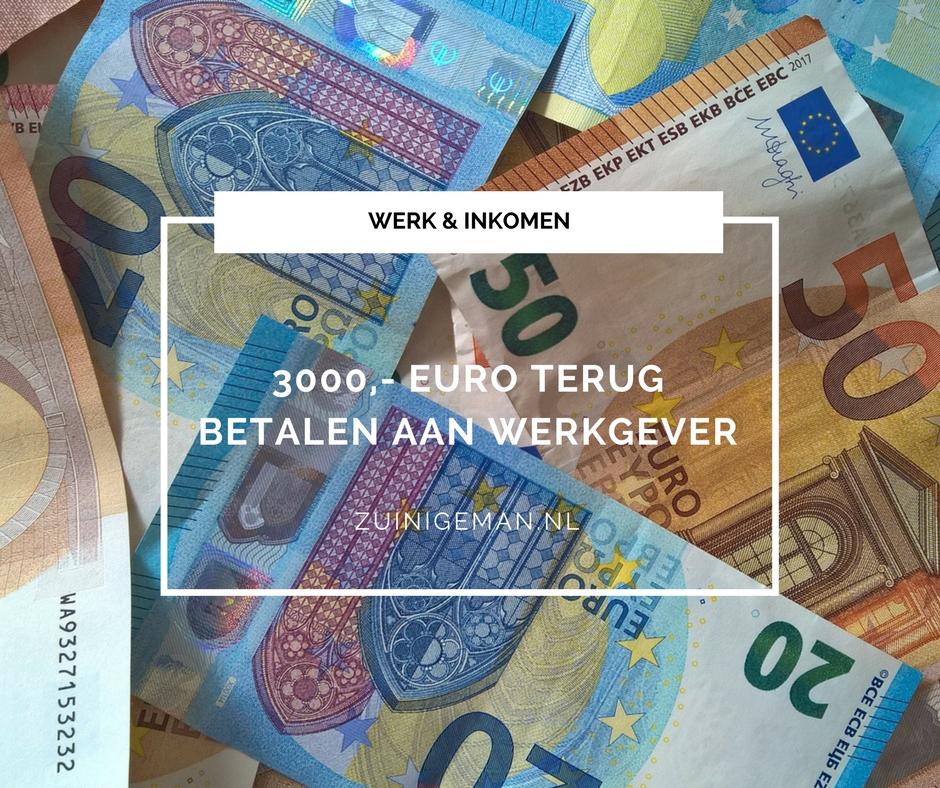 3000 euro terug betalen aan werkgever zuinigeman. Black Bedroom Furniture Sets. Home Design Ideas