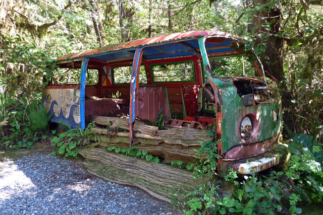 The decrepit remains of a VW bus at Tofino's Botanical Gardens...