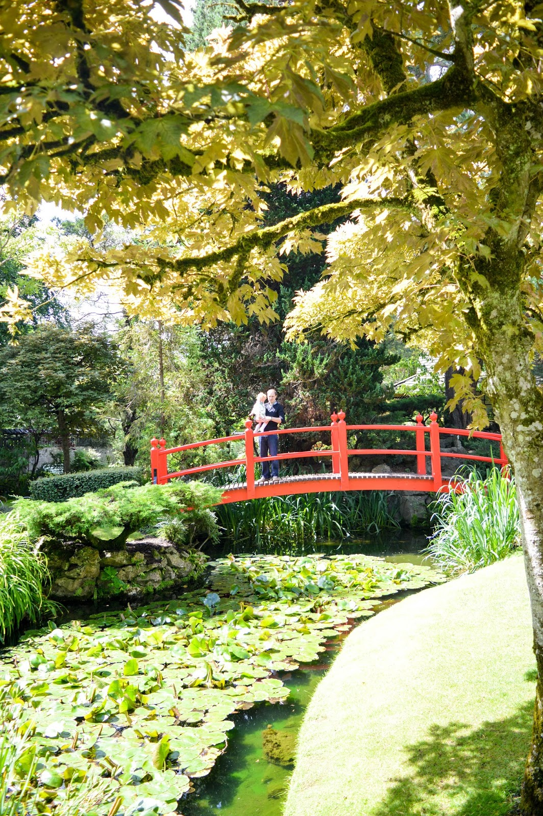 Irish National Stud & Japanese Garden, Co. Kildare