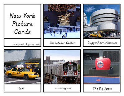 FREE 3-Part Cards for Safari Ltd New York City Toob from In Our Pond