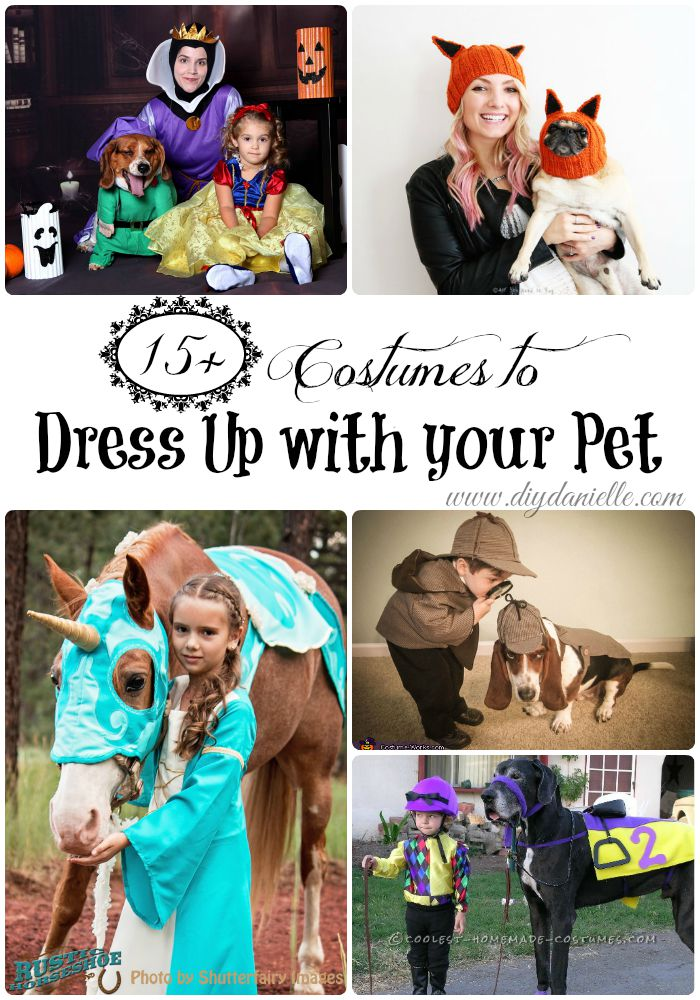 15 halloween costumes to dress up with your pet diy danielle love to dress up in costumes for halloween with your favorite four legged companions solutioingenieria Gallery