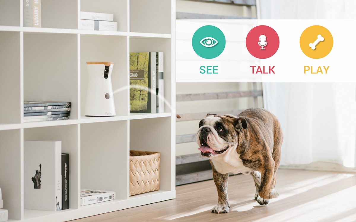 Designed To Help Dog Pas Care For Their Pups In Real Time All The Furbo Camera Is First Include A Treat Tossing Feature