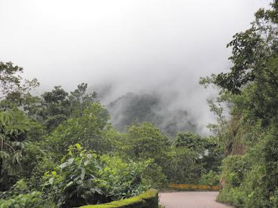 Imagen del Parque nacional Henri Pittier