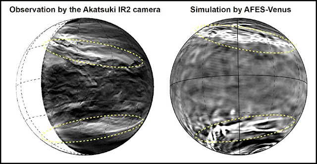 (Left) the lower clouds of Venus observed with the Akatsuki IR2 camera (after edge-emphasis process). The bright parts show where the cloud cover is thin. You can see the planetary-scale streak structure within the yellow dotted lines. (right) The planetary-scale streak structure reconstructed by AFES-Venus simulations. The bright parts show a strong downflow. (Partial editing of image in the Nature Communications paper. CC BY 4.0)