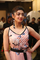 Actress Pranitha Subhash Pos in Short Dress at SIIMA Short Film Awards 2017 .COM 0142.JPG