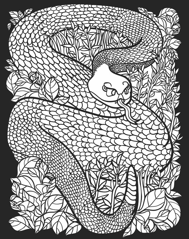 childhood education nocturnal animals coloring pages free colouring pictures. Black Bedroom Furniture Sets. Home Design Ideas