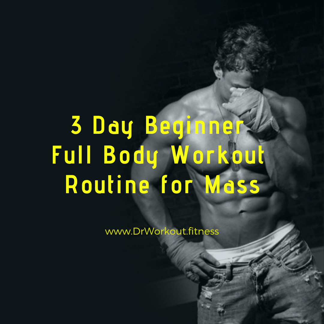 3 Day Beginner Workout Routine - workout program for beginners