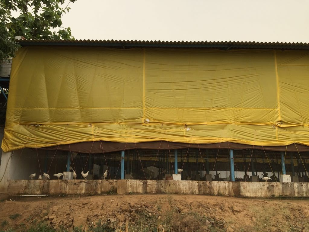 Bio Floc Fish Farming Tank! | Mohantarp is leading plastic