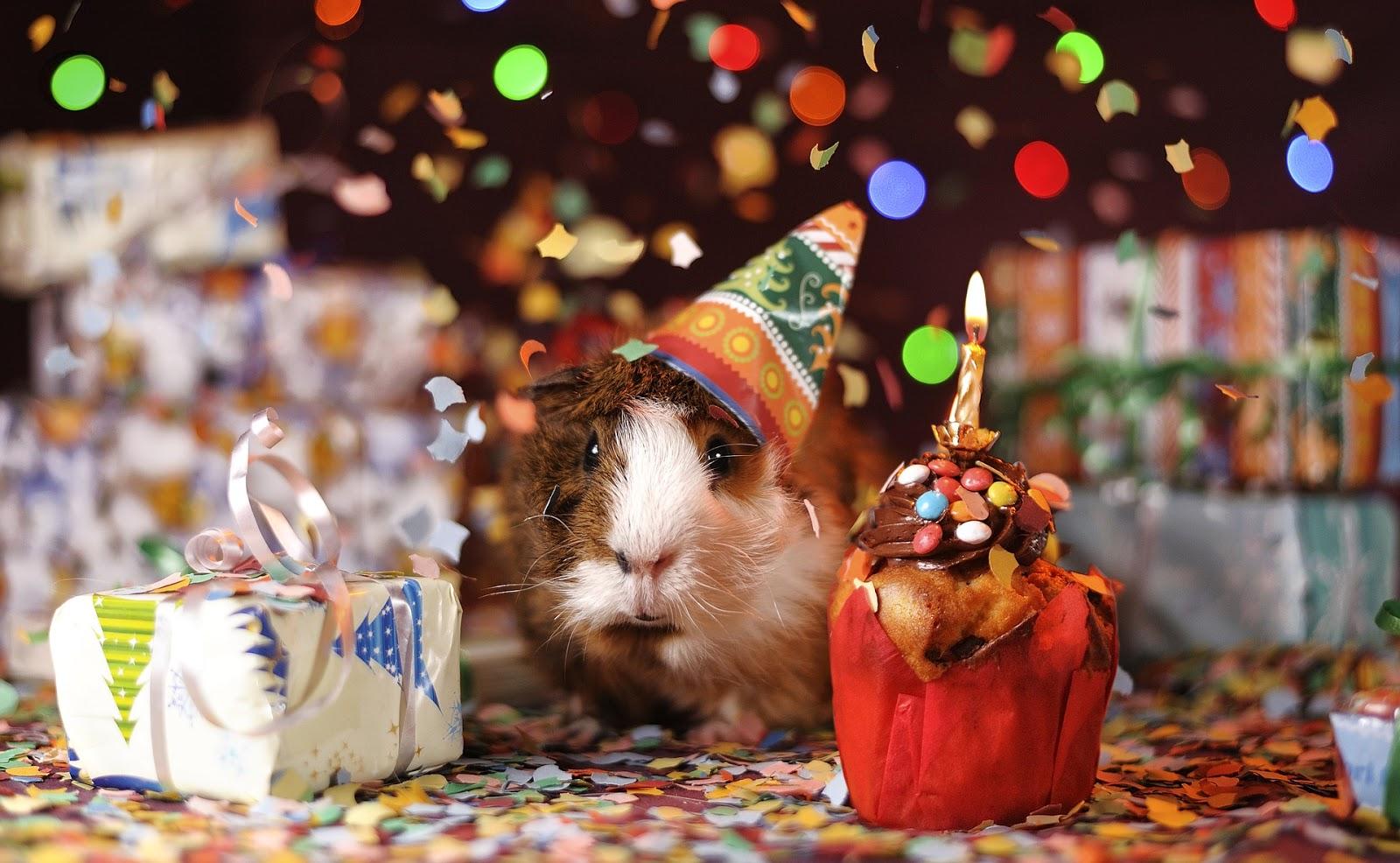 Urodzinowa lista życzeń