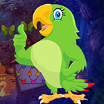 Games4king Find Astrologer Parrot Walkthrough
