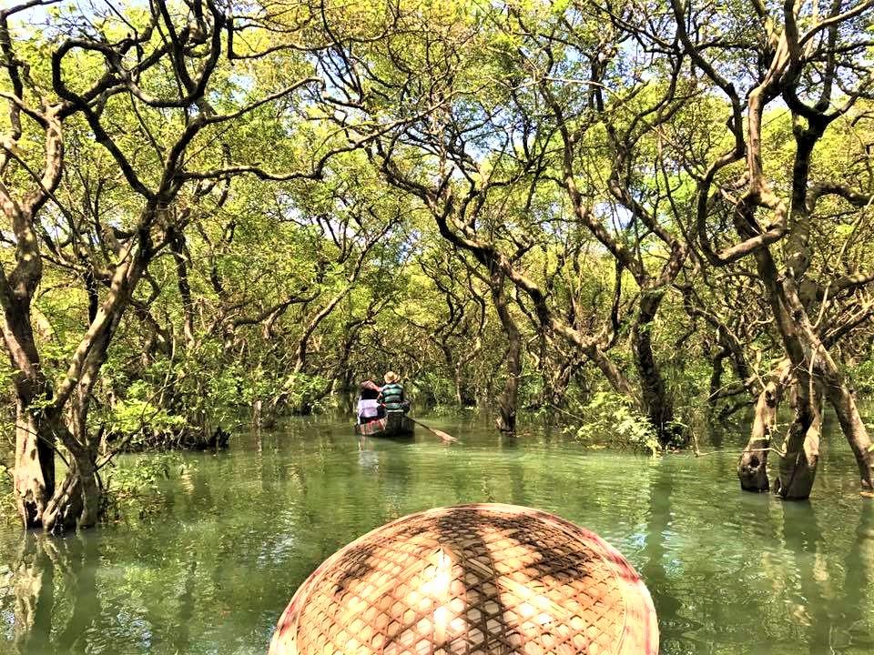 ratargul swamp forest of bangladesh
