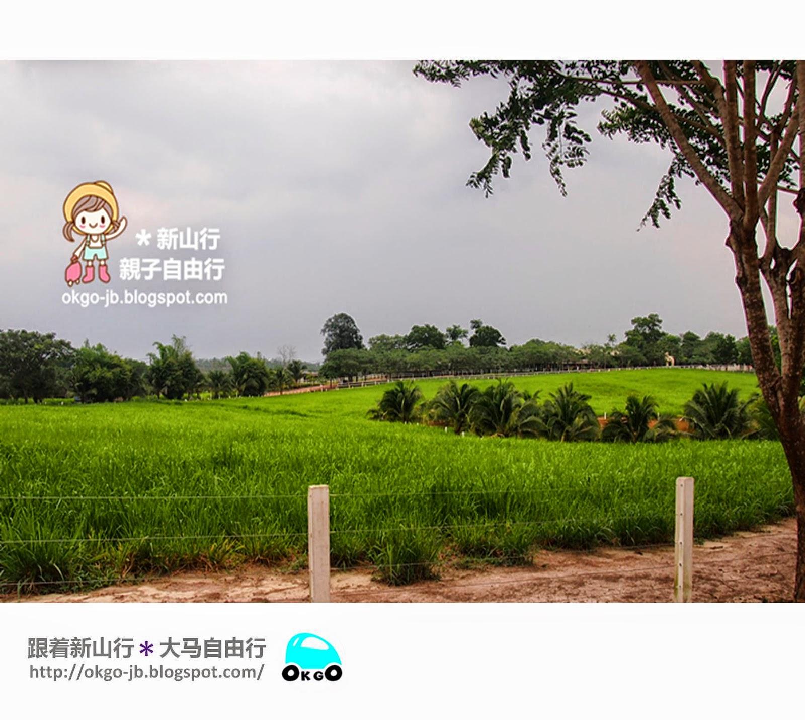 Kluang UK Farm grass land