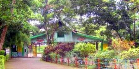 Hutan Wisata Punti Kayu hutan wisata punti kayu palembang hutan wisata punti kayu di palembang taman hutan wisata punti kayu