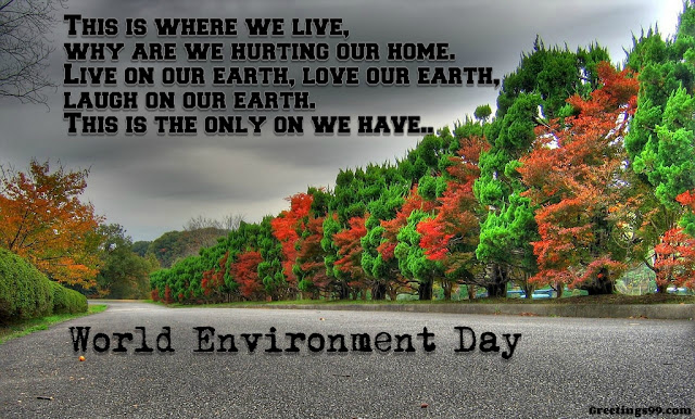 World Environment Day 2018 Posters