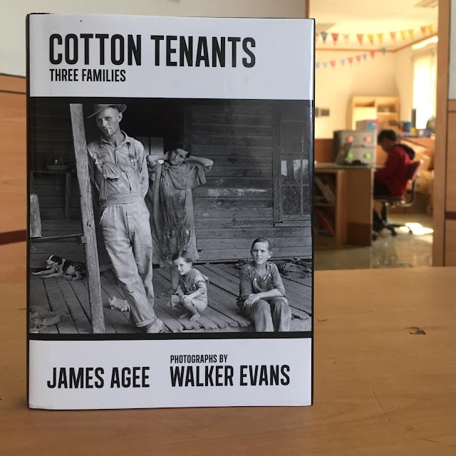 Cotton Tenants