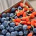 """""""Υπερτροφές"""" Καλλιεργήστε εύκολα και απλά υπερτροφές στον κήπο και στο μπαλκόνι σε γλάστρες"""