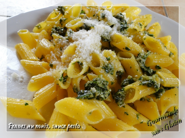 Pâtes sans gluten : pennes au maïs bio, sauce pesto