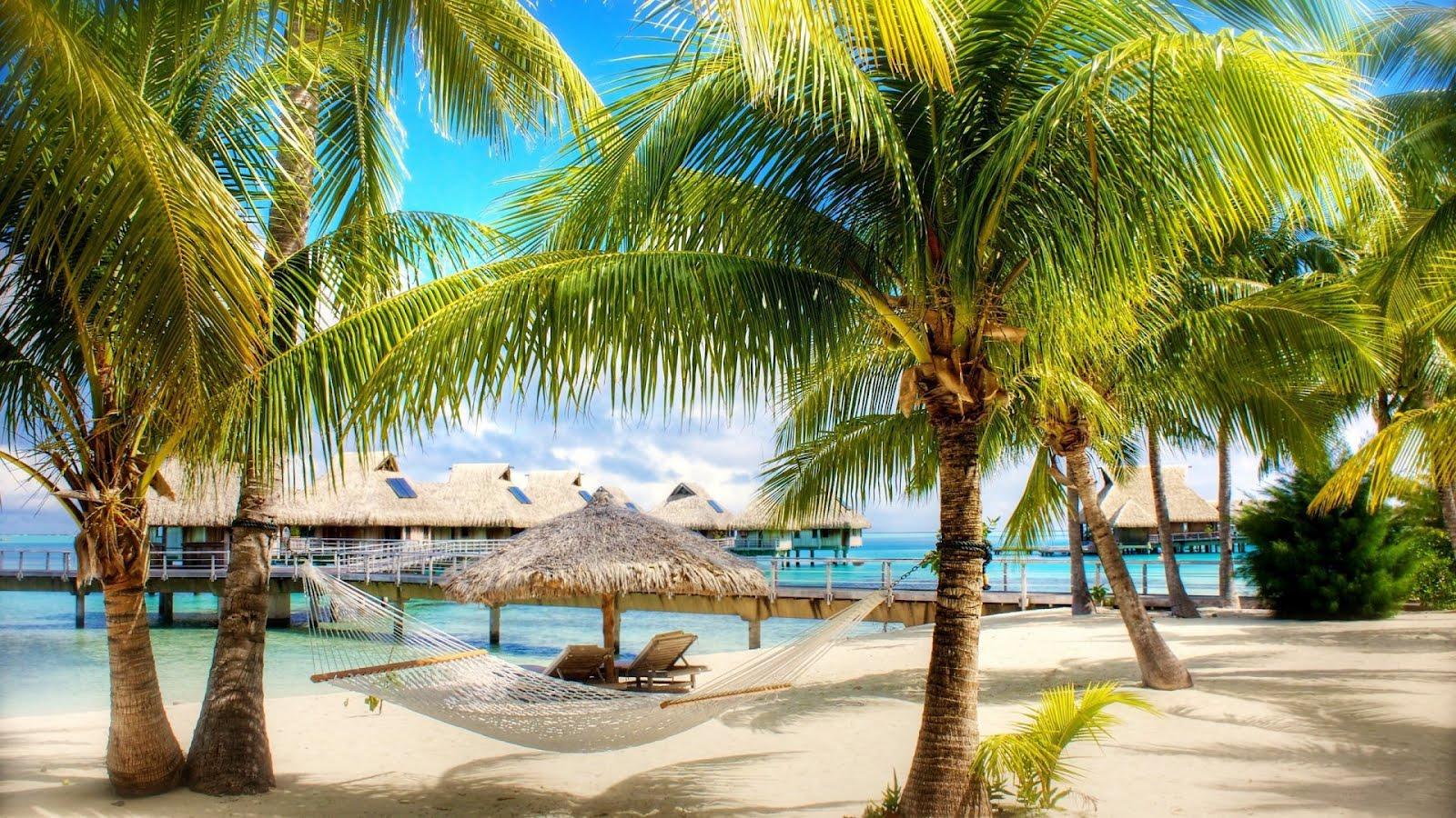 Hd Tropical Island Beach Paradise Wallpapers And Backgrounds: Tropical Beach, Paradise Wallpaper