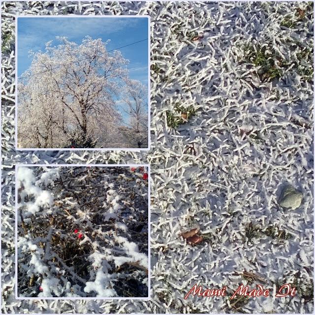 Frost - Frozen