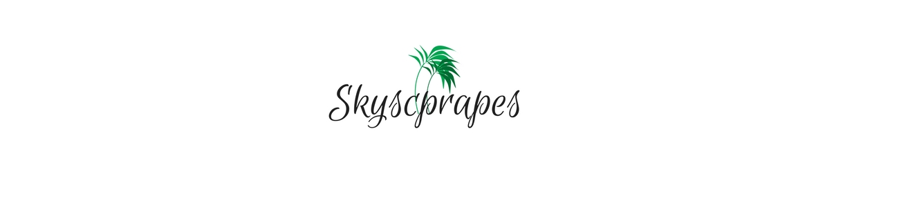 Skyscrapes | TRAVEL & more