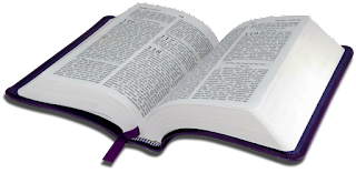 1 Corintios Capitulo 7 - Biblia Reina Valera