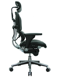 Top Rated Ergonomic Chair