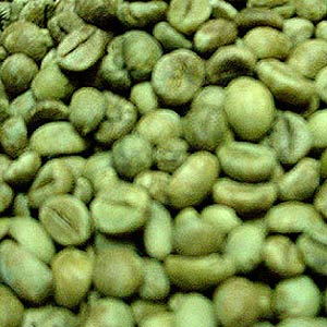 green coffee extract skeptic
