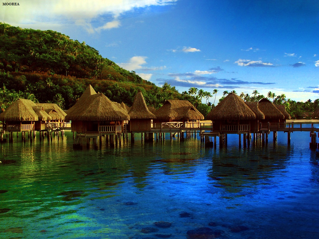 Hd Tropical Island Beach Paradise Wallpapers And Backgrounds: HD Desktop Wallpaper Collections