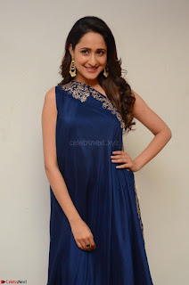 Pragya Jaiswal in beautiful Blue Gown Spicy Latest Pics February 2017 058.JPG