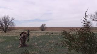 turkey fanning decoy with bowhunter