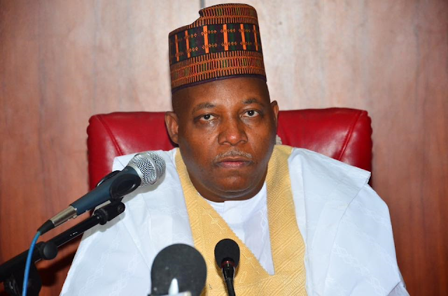Some Governors of states not much affected by Boko Haram insurgency are lying to get donations from international agencies - Shettima alleges
