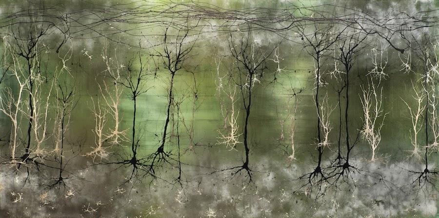 Crecimiento neuronas