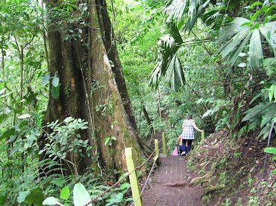 Senda hacia Cascada Río Fortuna, La Fortuna, Costa Rica, vuelta al mundo, round the world, La vuelta al mundo de Asun y Ricardo, mundoporlibre.com