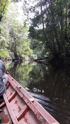 Menyusuri sungai mendalam dengan perahu Blogger Pontianak